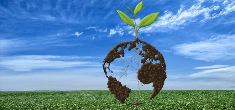 Imagen 3D de la Tierra, con un árbol creciendo desde su centro