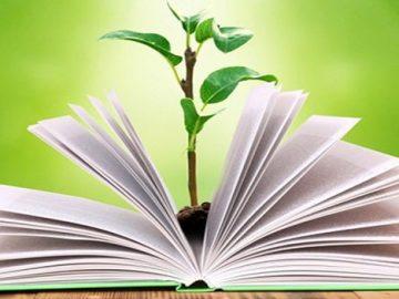 Libro abierto con un árbol creciendo desde dentro de las páginas