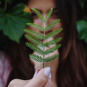 Mujer tomando una hoja de árbol